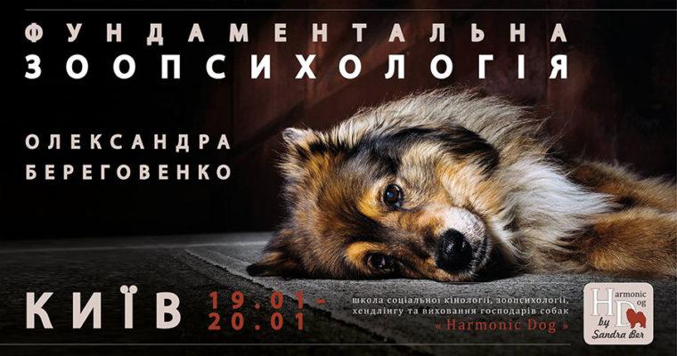 Семинар Фундаментальной зоопсихологии от Александры Береговенко