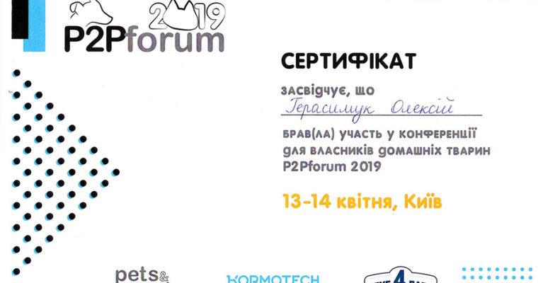 Два дня обучения на P2Pforum