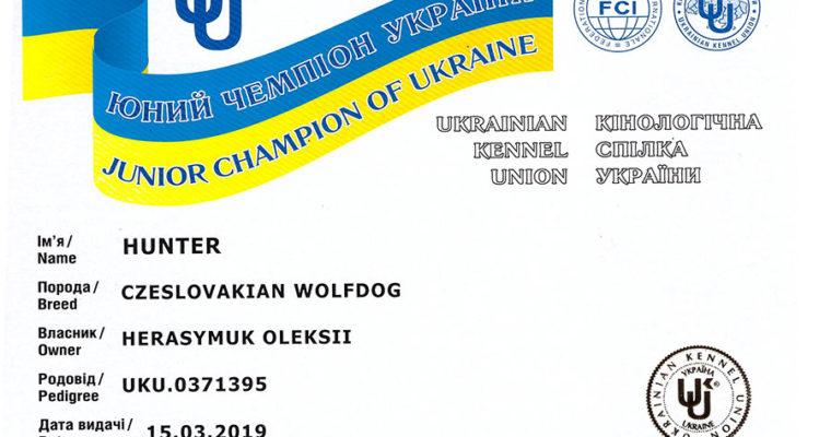 Мы получили сертификат Юного Чемпиона Украины