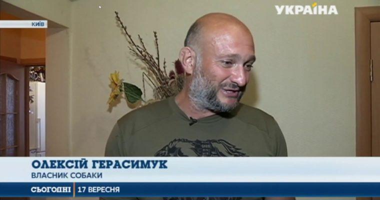 Чехословацкая волчья собака на телеканале Украина