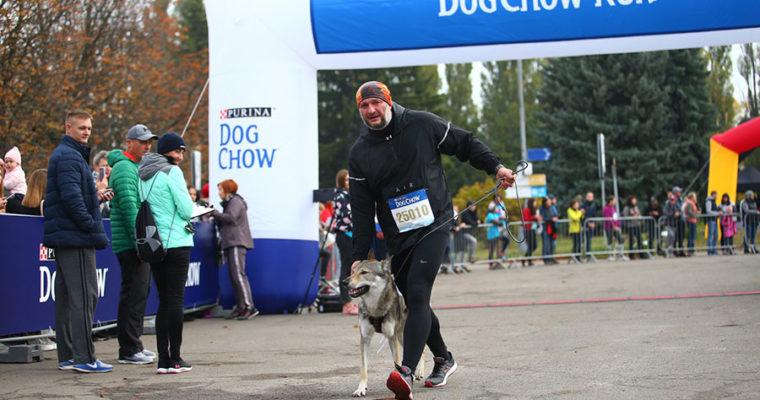 Dog chow run на Wizz Air Kyiv City Marathon