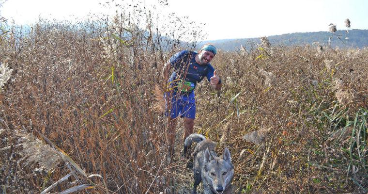 Трейл Ирдынские болота. Irdyn Trail Run 2019