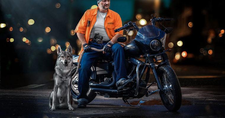 Волк, байкер и Harley-Davidson