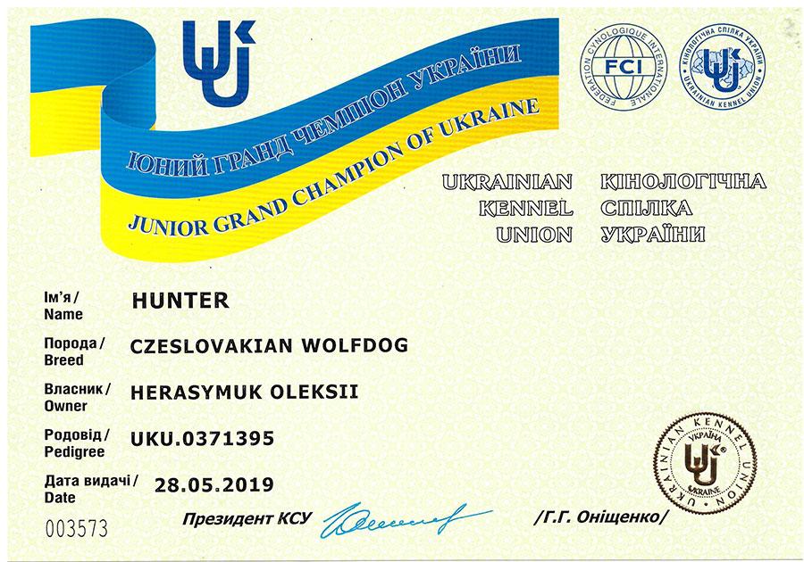 Сертификат юного гранд чемпиона Украины