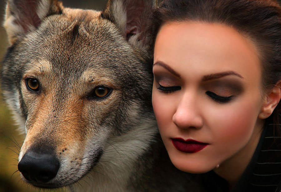 beautiful stranger and wolf