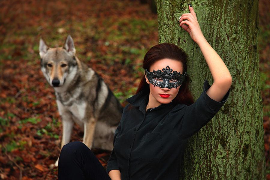 волк и прекрасная незнакомка
