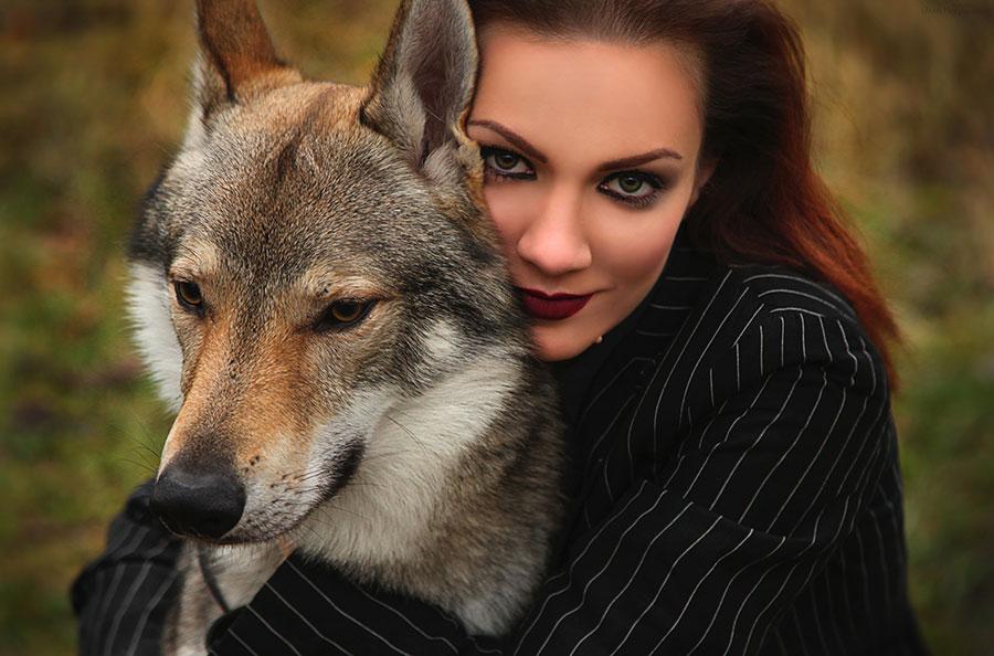 wolf and stranger