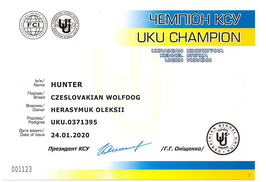 Сертификат чемпиона КСУ Украины