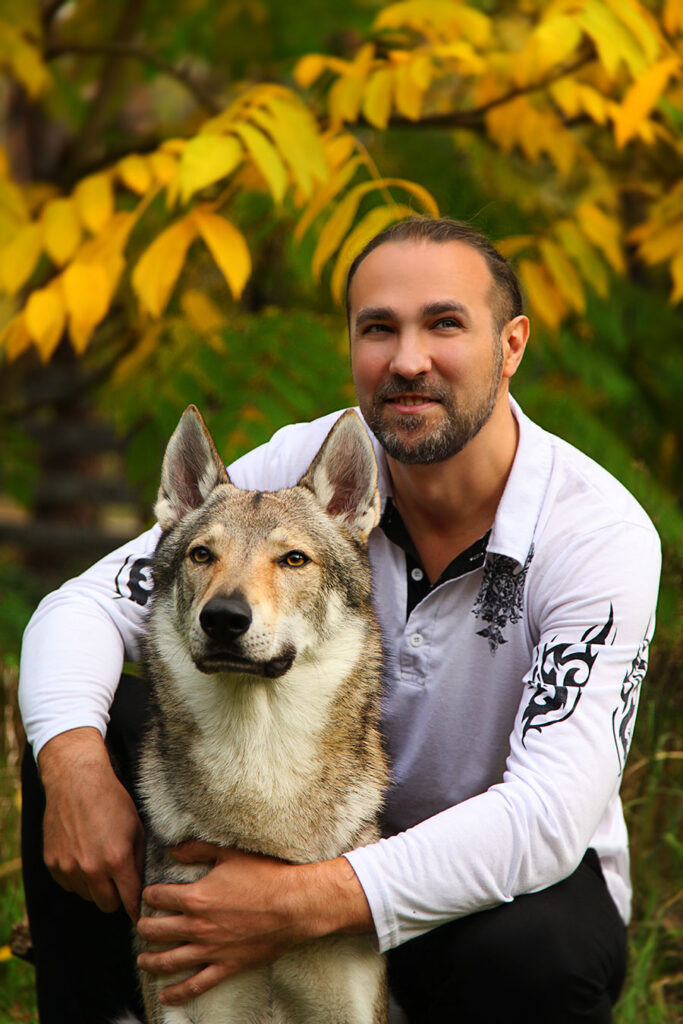 Заказ волка для фото и видео съемки