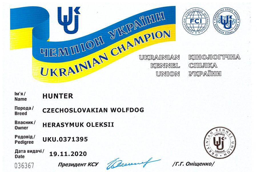 Чемпион Украины