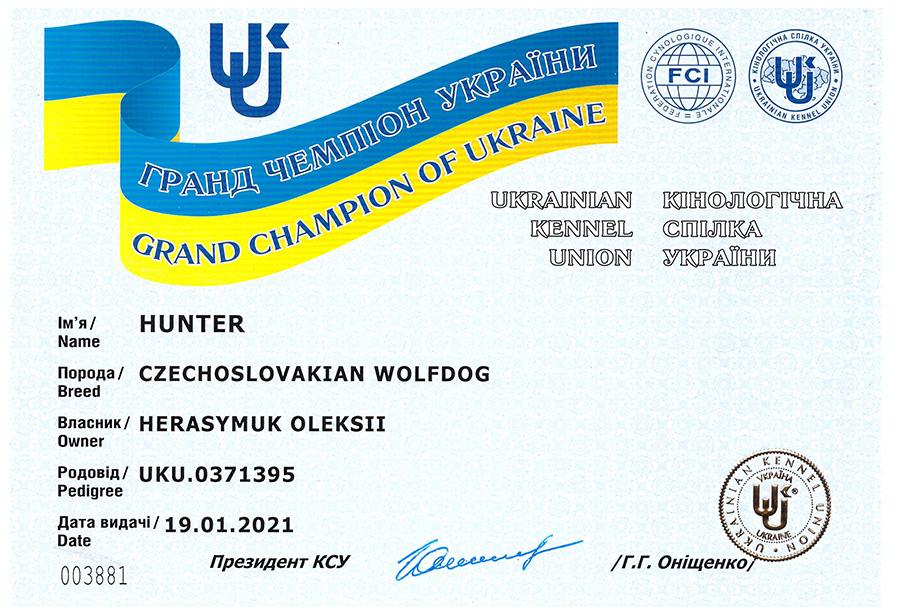 grand chempion ukrainy