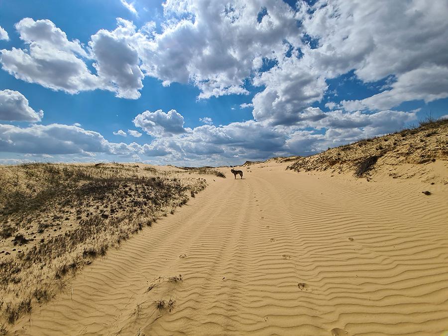 пустыня Украины