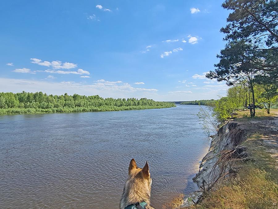 Mezhrechenskiy-park