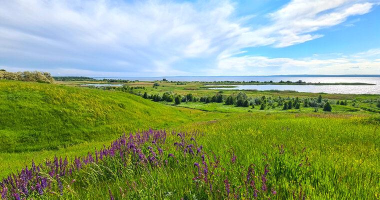 Белоозёрский национальный природный парк.