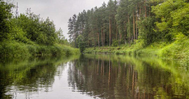 Сплав по реке Уборть