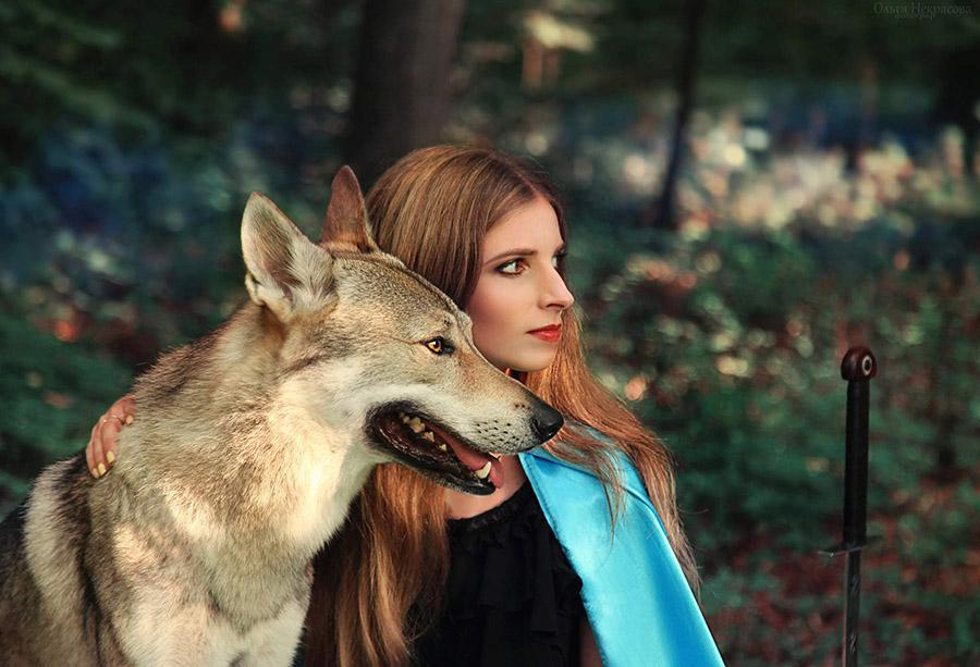 девушка рыцарь и волк